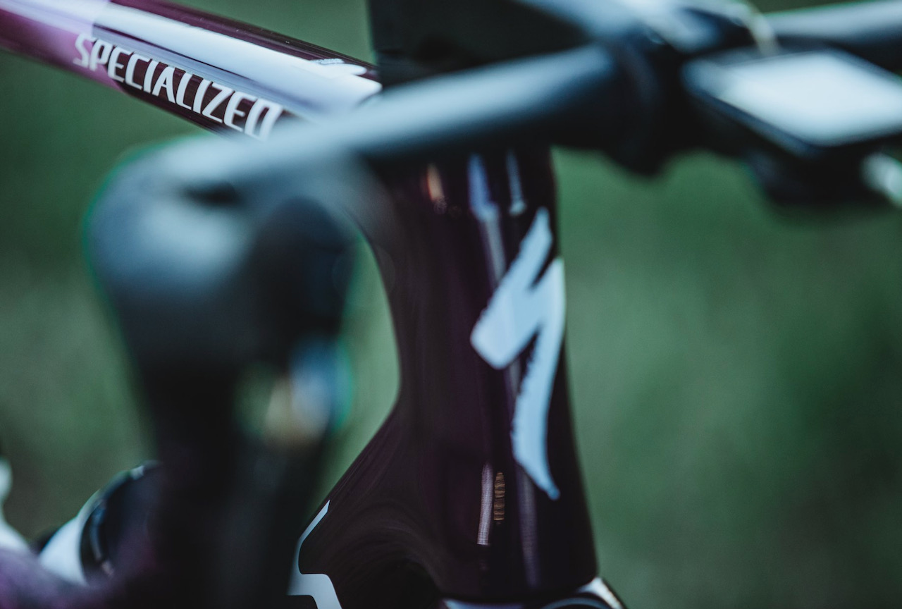 Peter Sagan Tarmac SL 7 Giro headtube