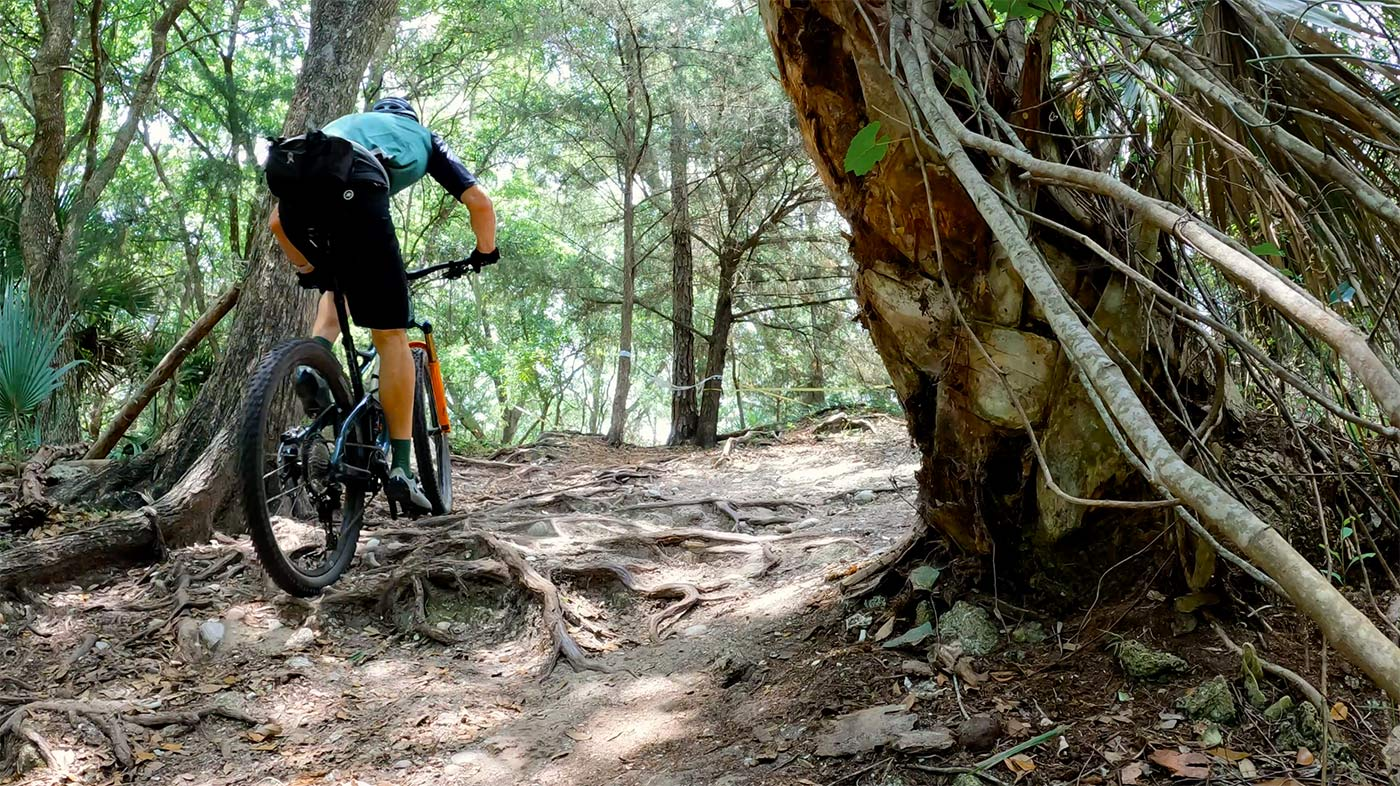climbing up roots on the new 2022 niner jet 9 rdo trail mountain bike for a review