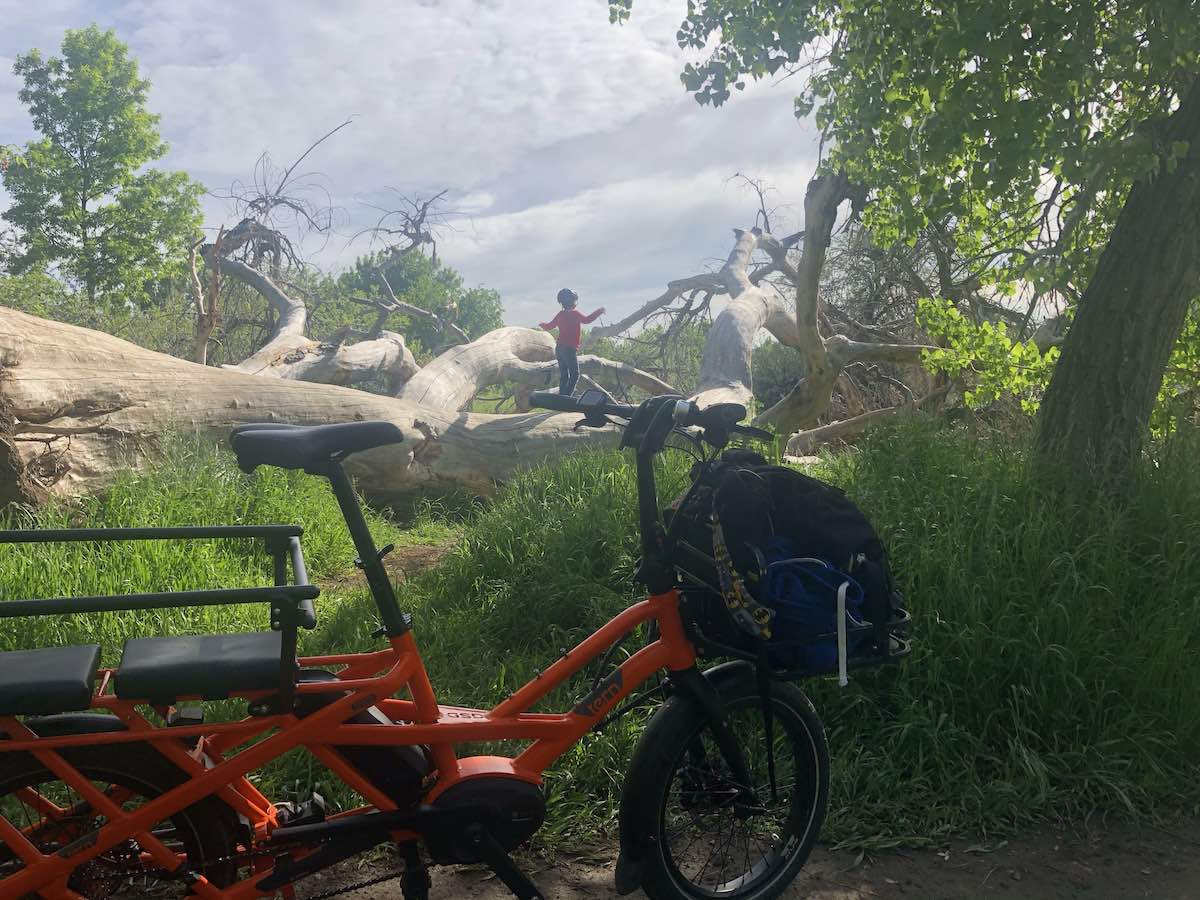 bikerumor pic of the day a tern clubhouse bike with school backpack is parked in front of a pile of logs, a small child is playing on the logs, there is greenery around and the sky is full of fluffy clouds.
