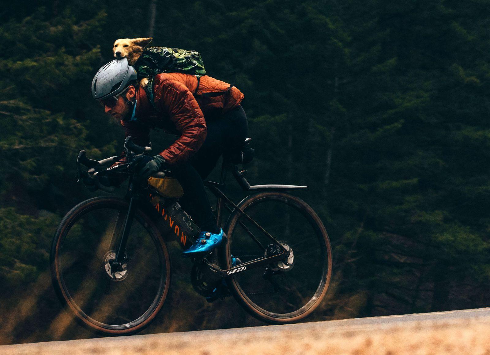 k9 sport sack alexey vermeulen best trail dog gear