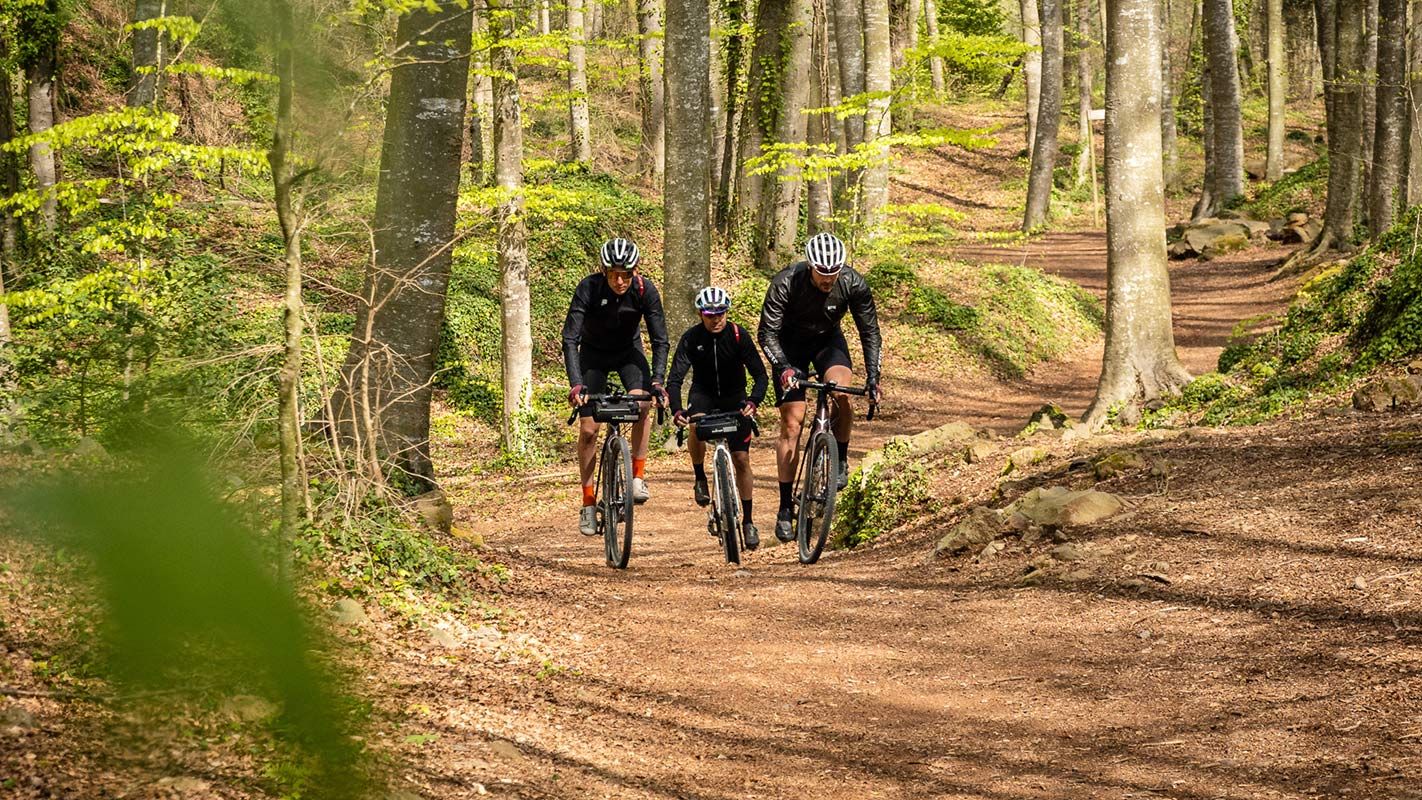 riding gravel bikes on forest roads in girona spain with thomson bike tours