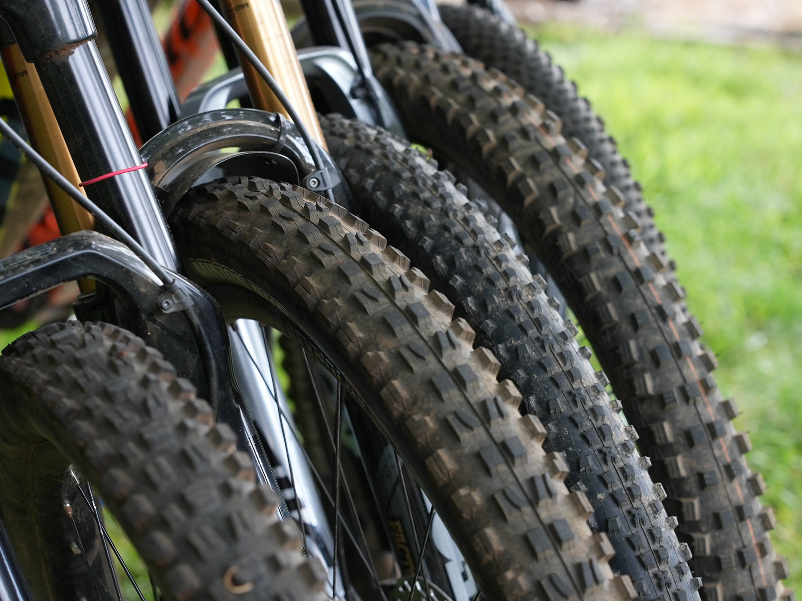 a group of the best mountain bike tires