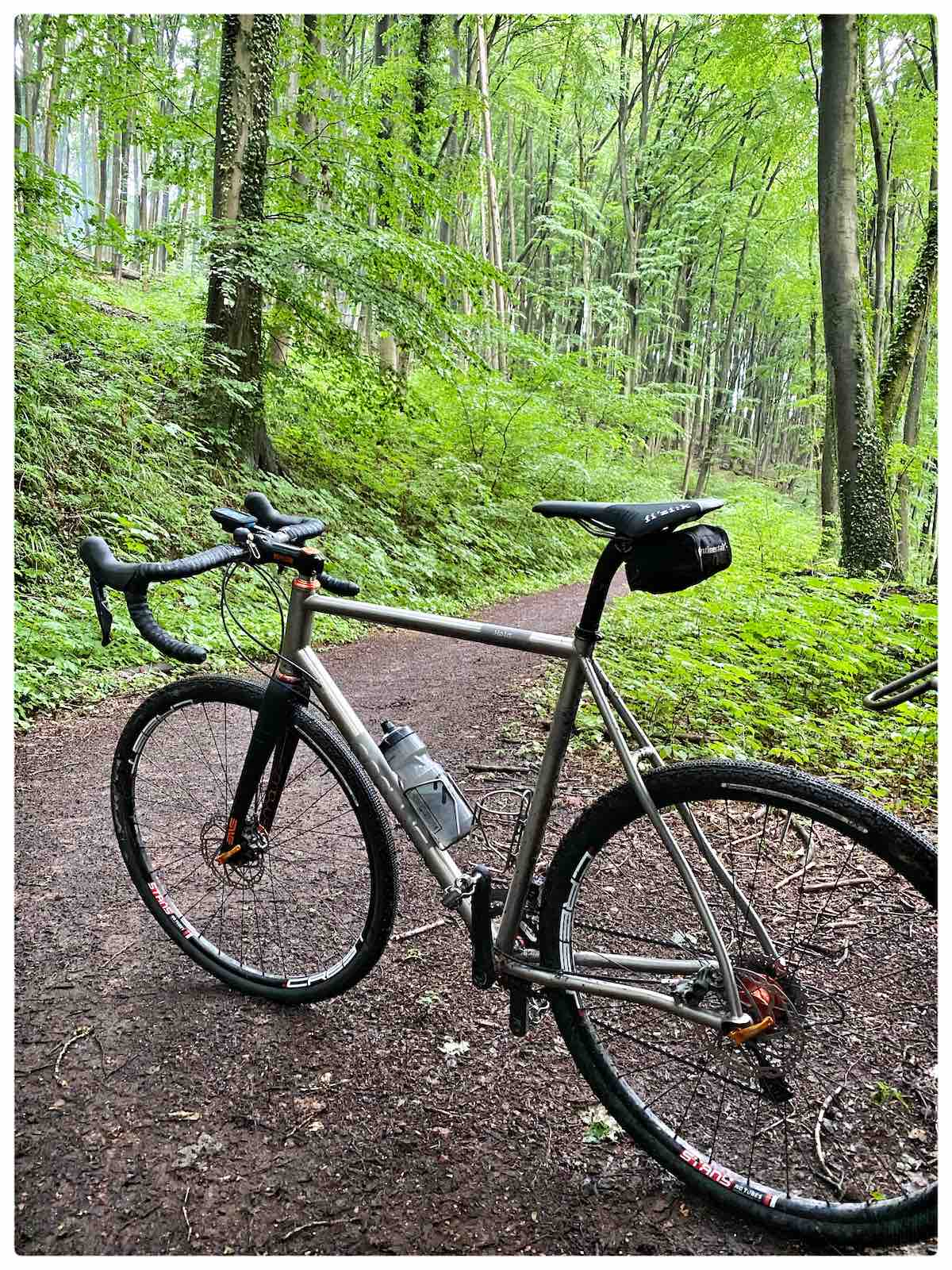 bikerumor pic of the day a titanium gravel bike is on a packed earth trail amid a bright green forest in Saarland Germany.
