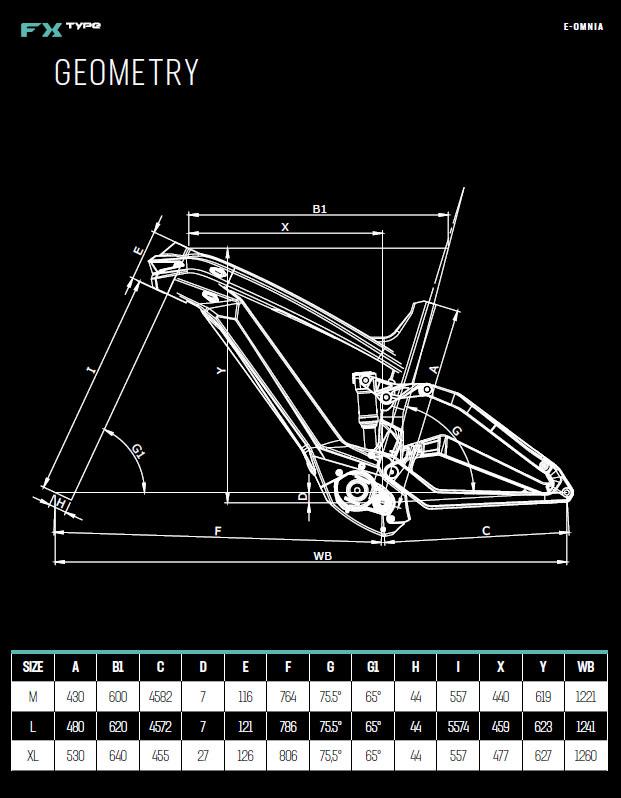 Bianchi FX Type geometry