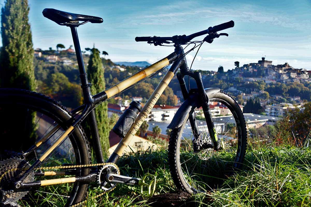 earthbound bamboo hardtail mountain bike