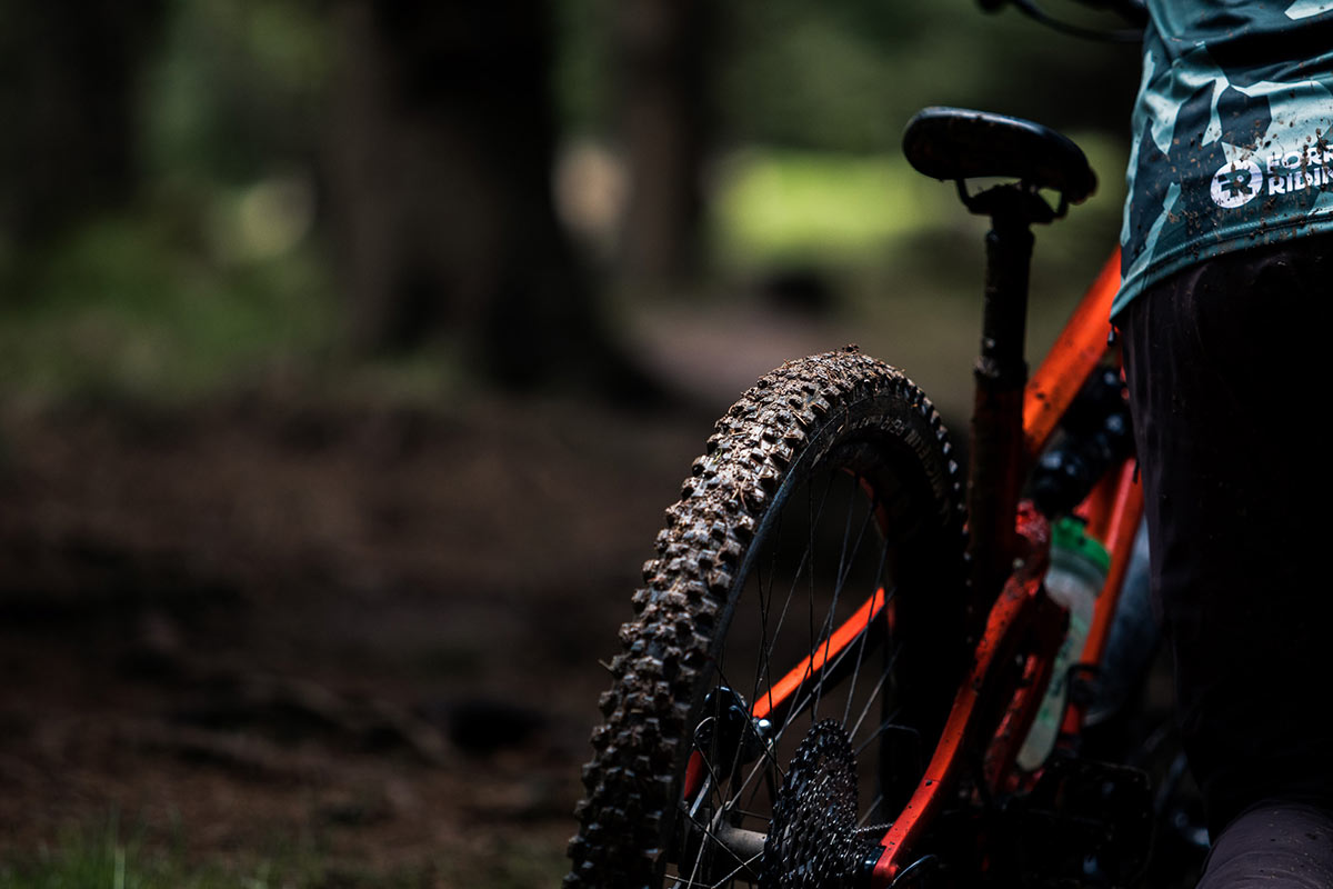 michelin wild enduro rear tire review wet conditions