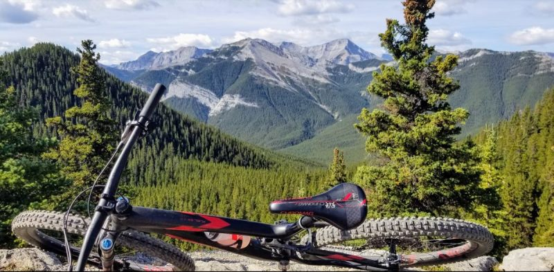 bikerumor pic of the day a mountain bike lies on its side with a view of snow capped rocky mountains in the distance, pine trees in the foreground. the day is sunny and there are some fluffy clouds in the sky.