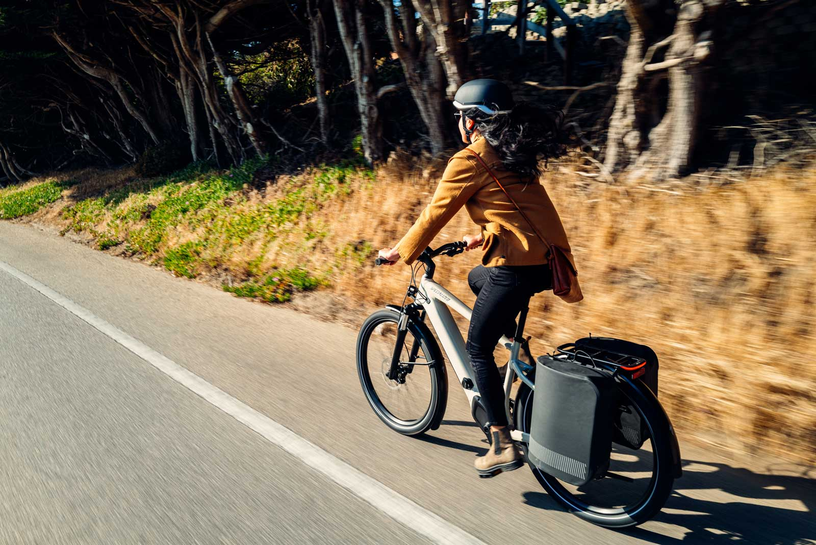 specialized tailwind pannier bags