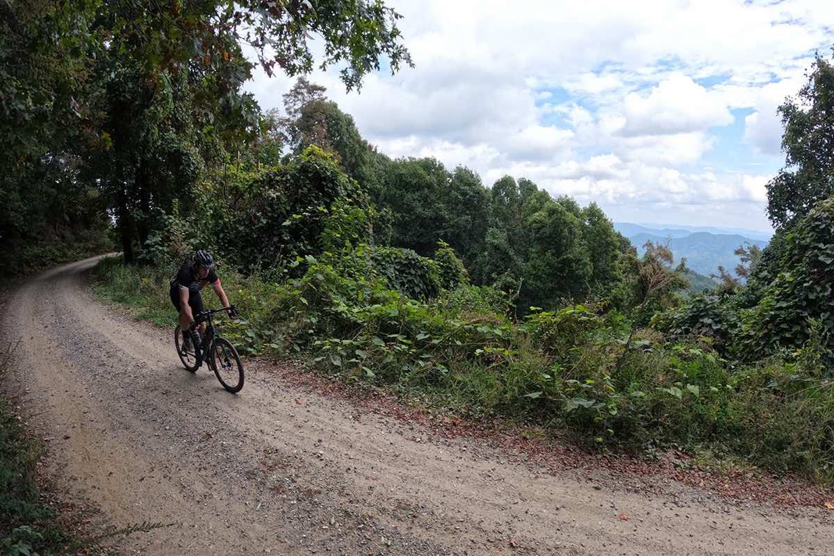 bikerumor pic of the day a person on a gravel bicycle is on a gravel road on the side of a mountain looking out over the tops of trees and a cloudy day.