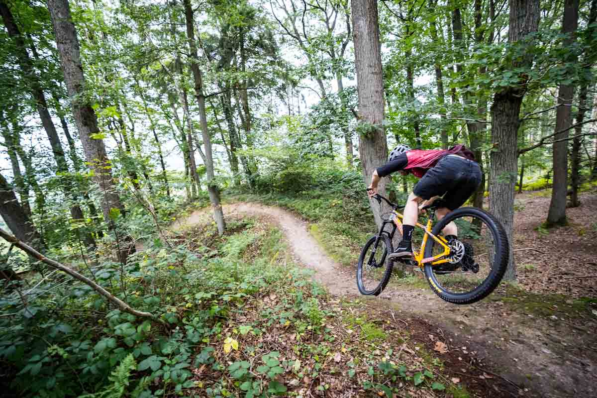 """Santa Cruz's 2022 Chameleon can be anything a 29"""" or MX hardtail can be"""