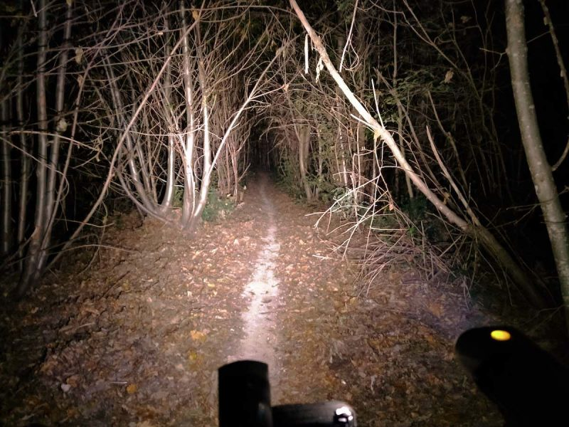 bikerumor pic of the day a bicycle's lights are lighting up a narrow dirt path through some skinny trees at night.