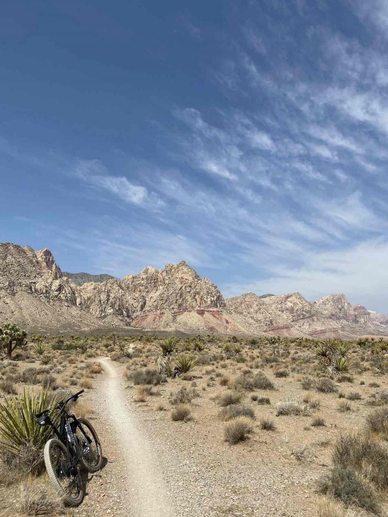 bikerumor pic of the day a mountain bike is leaning against a spiky bush next to a packed dirt trail heading out into the desert, rocky mountains are in the distance and there are whips clouds in the bright sunny sky.