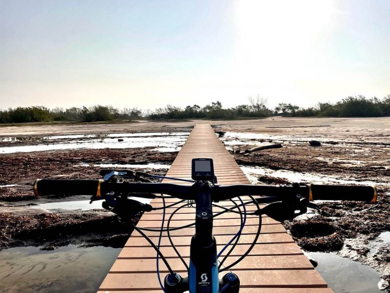 Bikerumor pic of the day a view of the handlebars of a mountain bike as it is headed across a wooden bridge over a wetland. The sun is high and bright over the flat landscape.