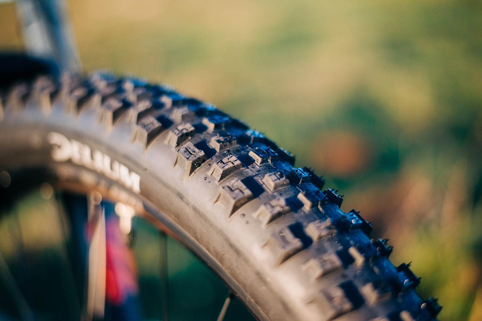 delium steady mtb tire