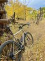 bikerumor pic of the day a bicycle leans against an old wooden structure in a field of golden colored grass, there is a grove of aspen trees in the distance and the leaves are all yellow, there is a tiny bit of sky showing and it is dark with clouds even though it is a bright day.