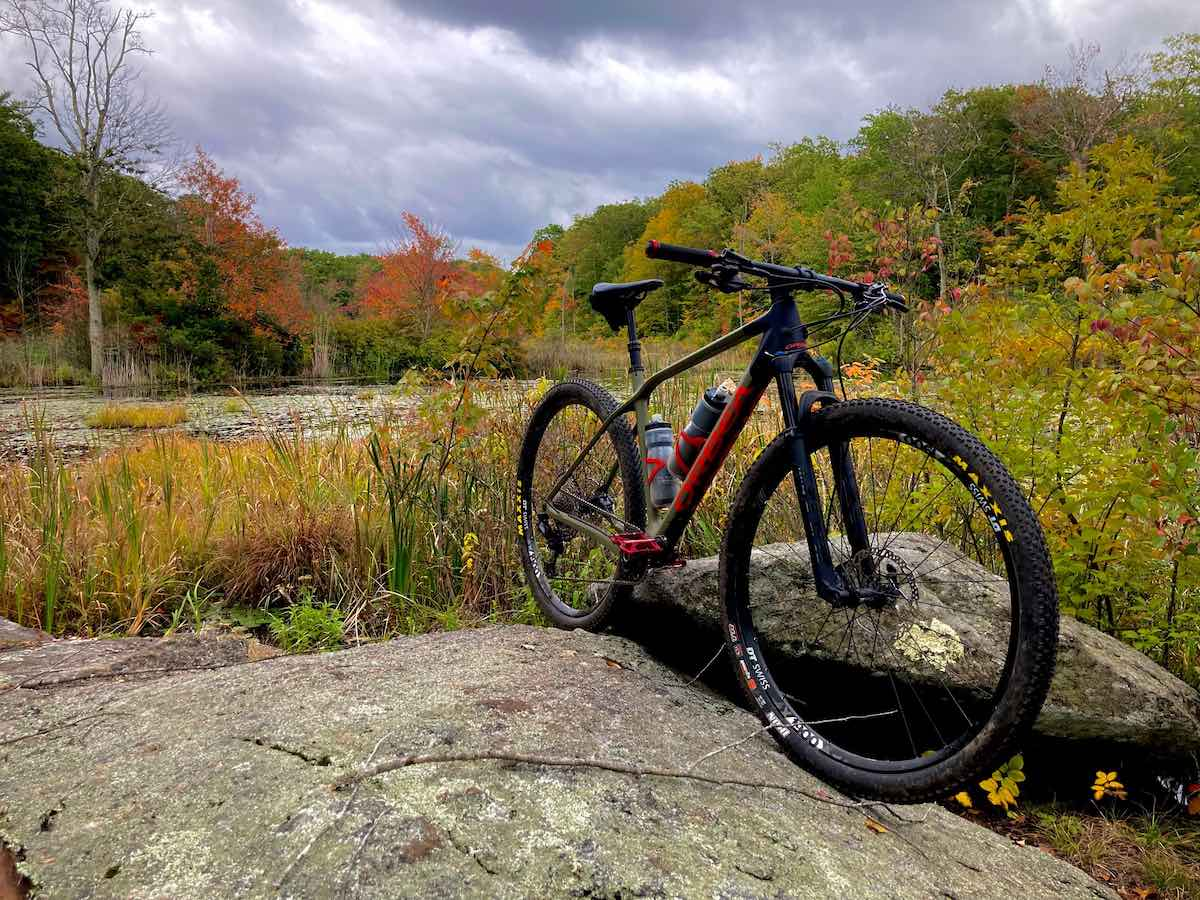 Bikerumor pic of the day a mountain bike is perched on the edge of two flat rocks near a wetland surrounded by trees turning autumn colors, the sky is dark and cloudy