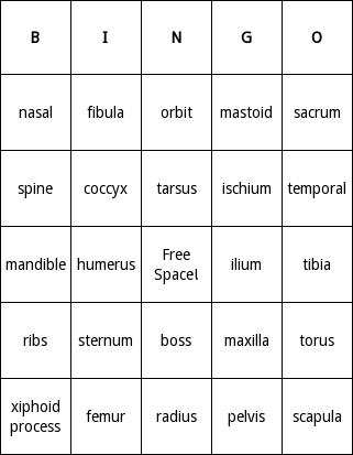 human bones bingo cards - bingo card generator, Skeleton