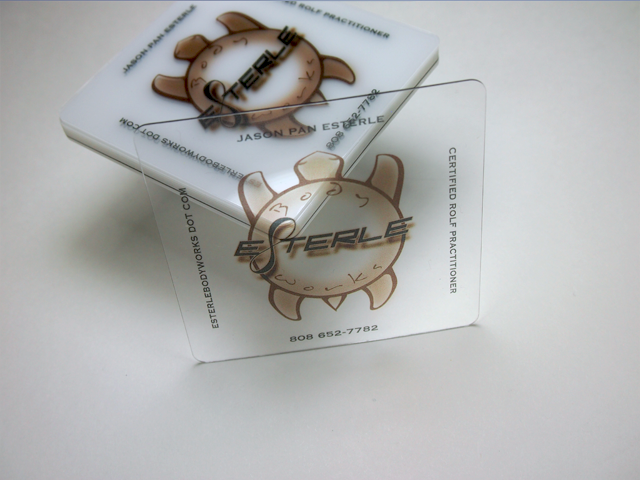 esterle clear business cards
