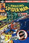 Amazing Spider-Man #216 comic books for sale
