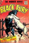 Black Fury comic books