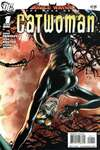 Bruce Wayne: The Long Road Home: Catwoman comic books
