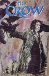 Crow #8 comic books for sale