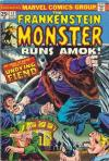 Frankenstein #13 comic books for sale