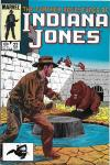 Further Adventures of Indiana Jones #22 comic books for sale