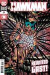 Hawkman #24 comic books for sale