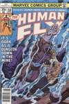 Human Fly #10 comic books for sale