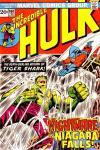 Incredible Hulk #160 comic books for sale