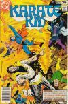 Karate Kid #13 comic books for sale
