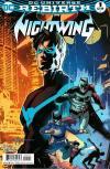 Nightwing Comic Books. Nightwing Comics.
