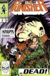 Punisher #16 comic books for sale