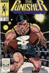 Punisher #21 comic books for sale