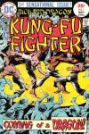 Richard Dragon: Kung-Fu Fighter Comic Books. Richard Dragon: Kung-Fu Fighter Comics.