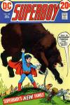 Superboy #192 comic books for sale