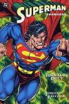 Superman/Doomsday: Hunter/Prey #2 comic books for sale