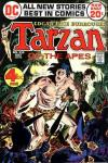 Tarzan #210 comic books for sale