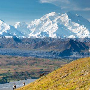 Alaska Update: Denali Wraps Up