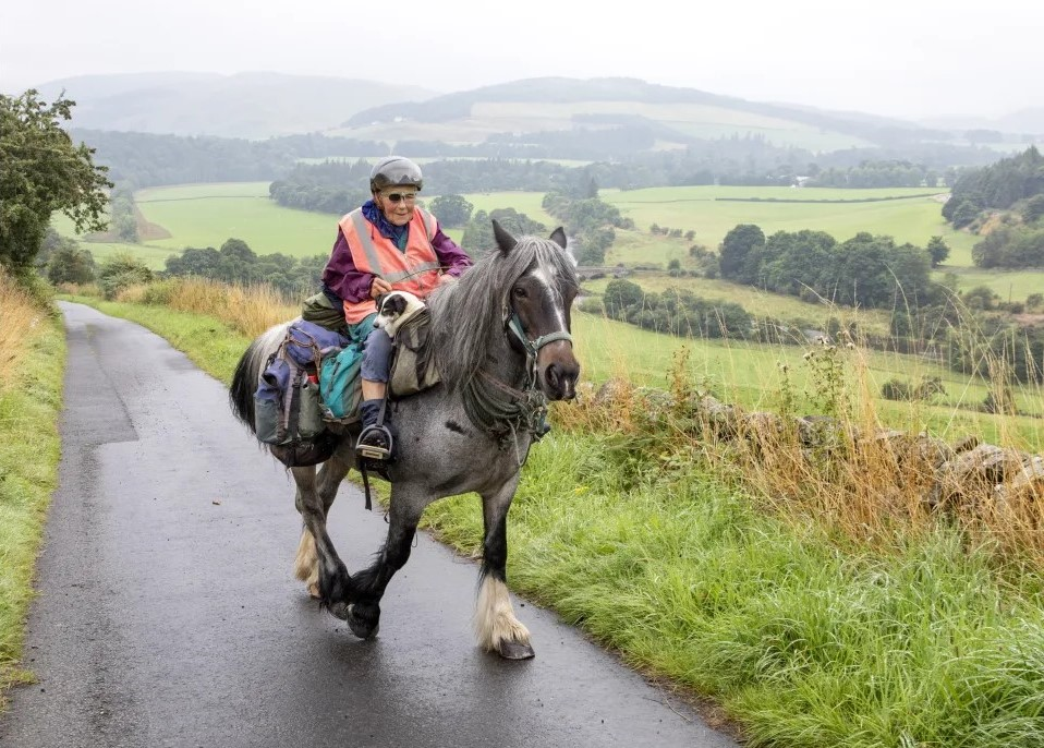 80 year old rides horse 1000km