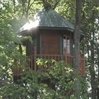Round_treehouse