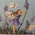 Flower_fairy