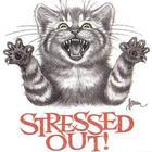 Stressed-cat