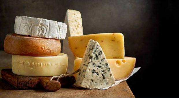 World Cheese Awards @ Bergamo, Italy