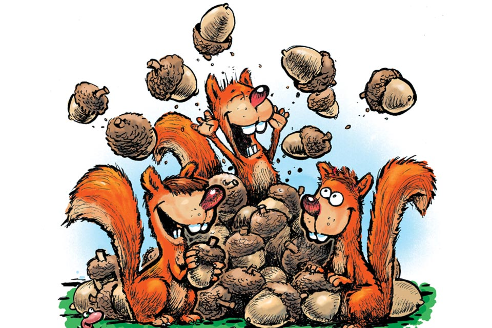 Nutty Squirrels