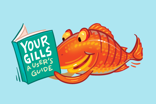 How do fish gills work?