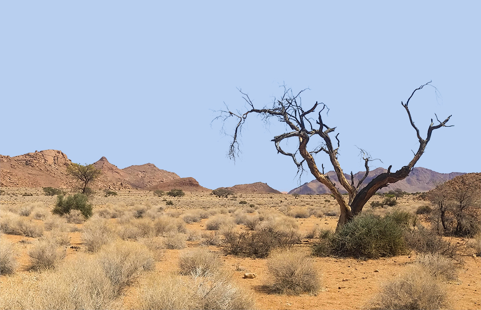 If sand is formed in oceans, how do deserts get so sandy?
