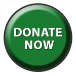 Donate Now button/link