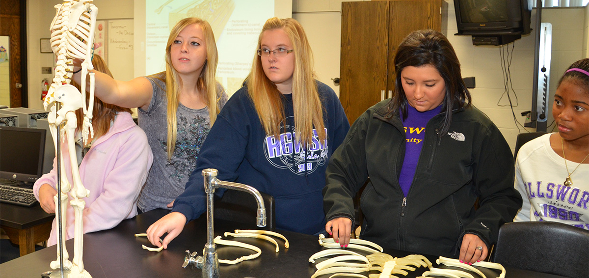 ECC students studying skeleton